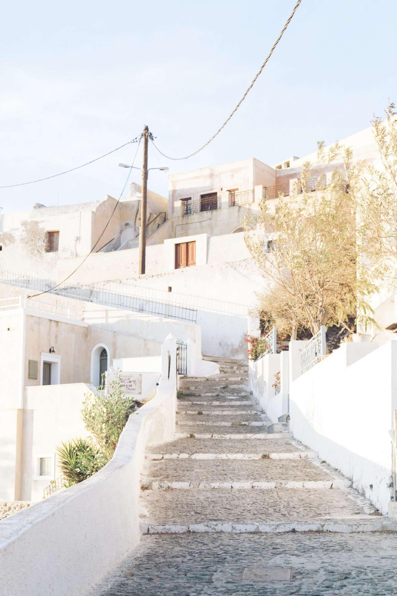 magnolias-on-silk-santorini-stairs