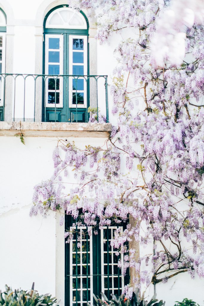 Magnolias On Silk Quinta De Sao Thiago